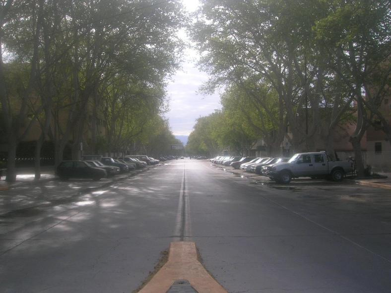 avenida ignacio de la rosa