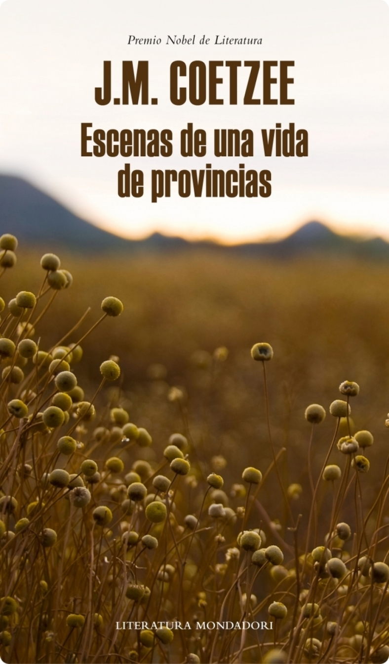 escenas-de-una-vida-de-provincias-ebook-9788439727835