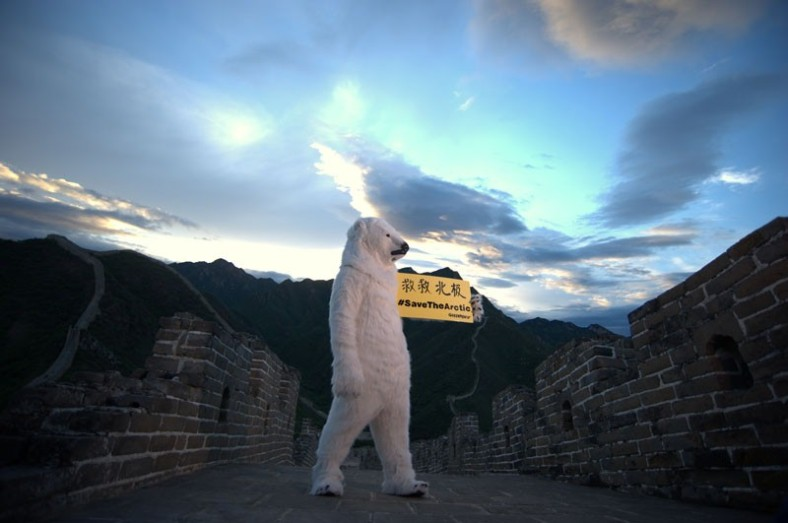 great-wall-polar-bear-4
