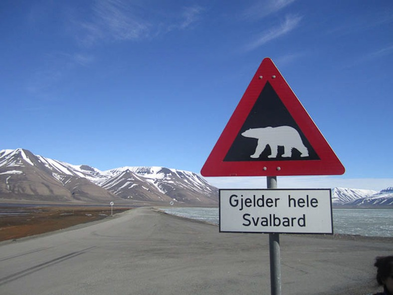 Svalbard-9